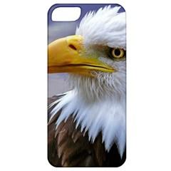 Bald Eagle Apple Iphone 5 Classic Hardshell Case by Siebenhuehner