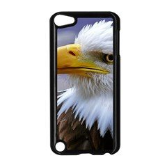 Bald Eagle Apple Ipod Touch 5 Case (black) by Siebenhuehner