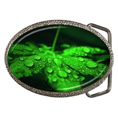 Waterdrops Belt Buckle (oval) by Siebenhuehner