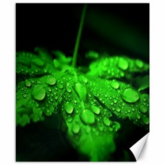 Waterdrops Canvas 8  X 10  (unframed) by Siebenhuehner