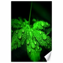 Waterdrops Canvas 24  X 36  (unframed) by Siebenhuehner