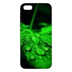 Waterdrops Iphone 5s Premium Hardshell Case