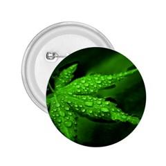 Leaf With Drops 2 25  Button by Siebenhuehner