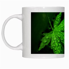 Leaf With Drops White Coffee Mug by Siebenhuehner
