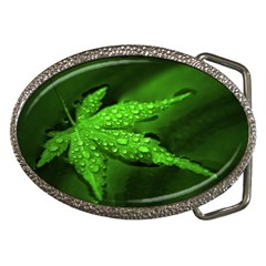 Leaf With Drops Belt Buckle (oval) by Siebenhuehner