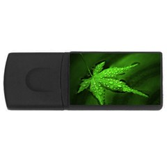 Leaf With Drops 2GB USB Flash Drive (Rectangle)