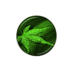 Leaf With Drops Golf Ball Marker (for Hat Clip) by Siebenhuehner
