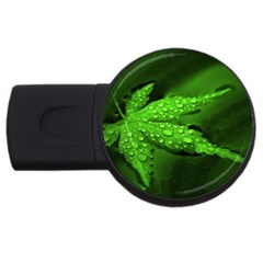 Leaf With Drops 4gb Usb Flash Drive (round) by Siebenhuehner