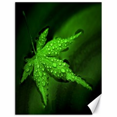 Leaf With Drops Canvas 18  X 24  (unframed) by Siebenhuehner