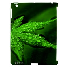 Leaf With Drops Apple Ipad 3/4 Hardshell Case (compatible With Smart Cover) by Siebenhuehner