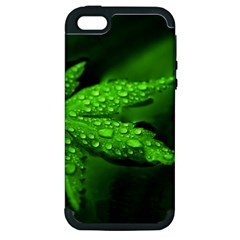 Leaf With Drops Apple Iphone 5 Hardshell Case (pc+silicone) by Siebenhuehner