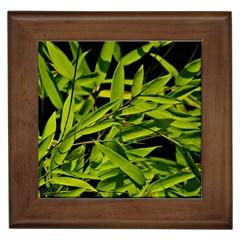 Bamboo Framed Ceramic Tile by Siebenhuehner