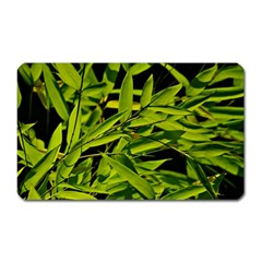 Bamboo Magnet (rectangular) by Siebenhuehner