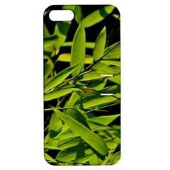 Bamboo Apple Iphone 5 Hardshell Case With Stand by Siebenhuehner