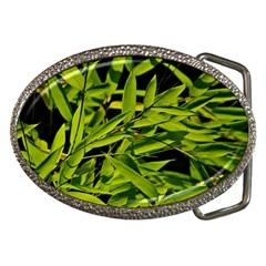 Bamboo Belt Buckle (oval)
