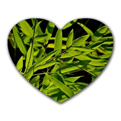 Bamboo Mouse Pad (heart) by Siebenhuehner