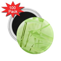 Bamboo 2 25  Button Magnet (100 Pack) by Siebenhuehner