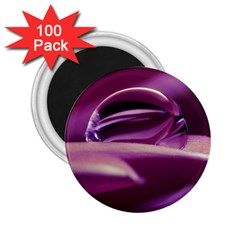 Waterdrop 2 25  Button Magnet (100 Pack) by Siebenhuehner