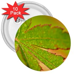 Leaf 3  Button (10 pack)