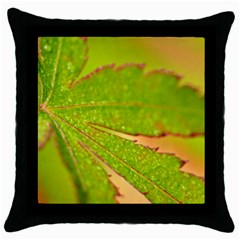 Leaf Black Throw Pillow Case by Siebenhuehner