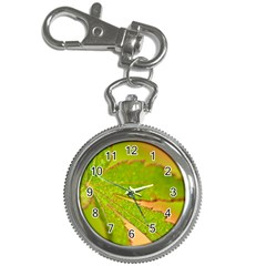 Leaf Key Chain & Watch by Siebenhuehner