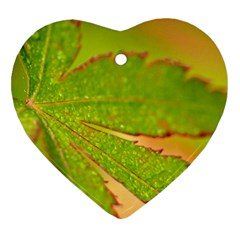 Leaf Heart Ornament (two Sides)