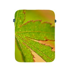 Leaf Apple Ipad 2/3/4 Protective Soft Case by Siebenhuehner