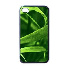 Bamboo Apple Iphone 4 Case (black) by Siebenhuehner