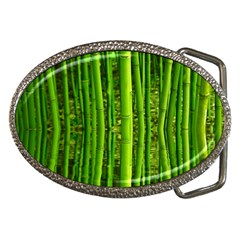Bamboo Belt Buckle (oval) by Siebenhuehner