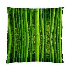 Bamboo Cushion Case (two Sided)