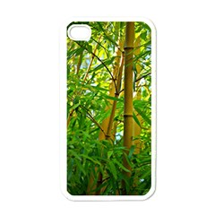 Bamboo Apple Iphone 4 Case (white) by Siebenhuehner