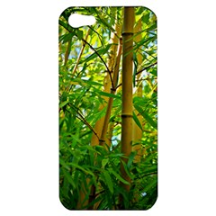 Bamboo Apple Iphone 5 Hardshell Case by Siebenhuehner