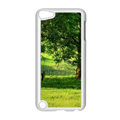 Trees Apple Ipod Touch 5 Case (white) by Siebenhuehner