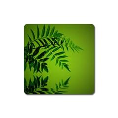 Leaf Magnet (square) by Siebenhuehner