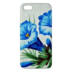 Enzian Iphone 5 Premium Hardshell Case by Siebenhuehner