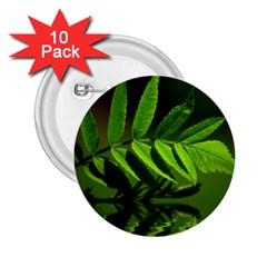 Leaf 2 25  Button (10 Pack) by Siebenhuehner
