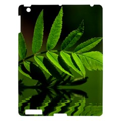 Leaf Apple Ipad 3/4 Hardshell Case by Siebenhuehner