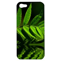 Leaf Apple Iphone 5 Hardshell Case by Siebenhuehner