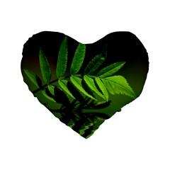 Leaf 16  Premium Heart Shape Cushion  by Siebenhuehner