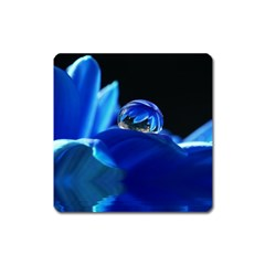 Waterdrop Magnet (square) by Siebenhuehner