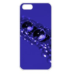 Waterdrops Apple Iphone 5 Seamless Case (white) by Siebenhuehner