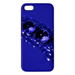 Waterdrops Iphone 5s Premium Hardshell Case by Siebenhuehner