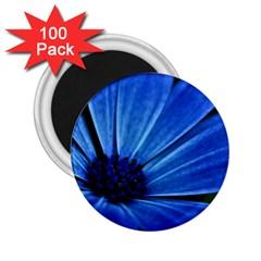 Flower 2 25  Button Magnet (100 Pack) by Siebenhuehner