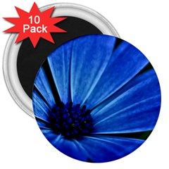 Flower 3  Button Magnet (10 Pack) by Siebenhuehner
