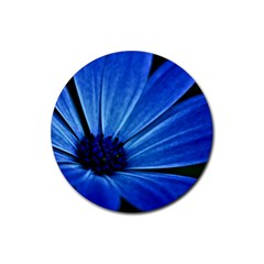 Flower Drink Coasters 4 Pack (round) by Siebenhuehner