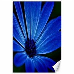 Flower Canvas 12  X 18  (unframed)