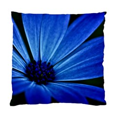 Flower Cushion Case (single Sided)  by Siebenhuehner
