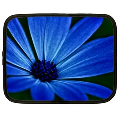 Flower Netbook Case (xxl) by Siebenhuehner