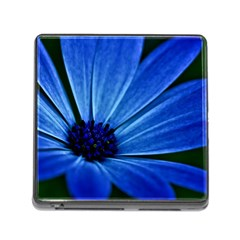 Flower Memory Card Reader With Storage (square) by Siebenhuehner