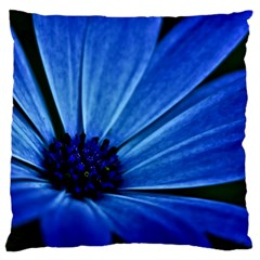 Flower Large Cushion Case (single Sided)  by Siebenhuehner